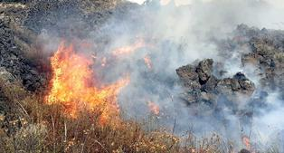 Incendio forestal amenaza Parque Arqueológico de Raqchi en Cusco | VIDEO