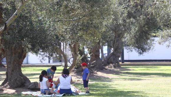 La infectóloga del INS, Lely Solary, indicó que en esta ocasión será una celebración de Navidad distinta y podría desarrollarse en los parques. (Foto: GEC)