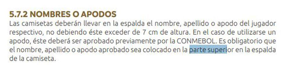 Lo que dice el Manual de Clubes de la Conmebol Libertadores 2020.
