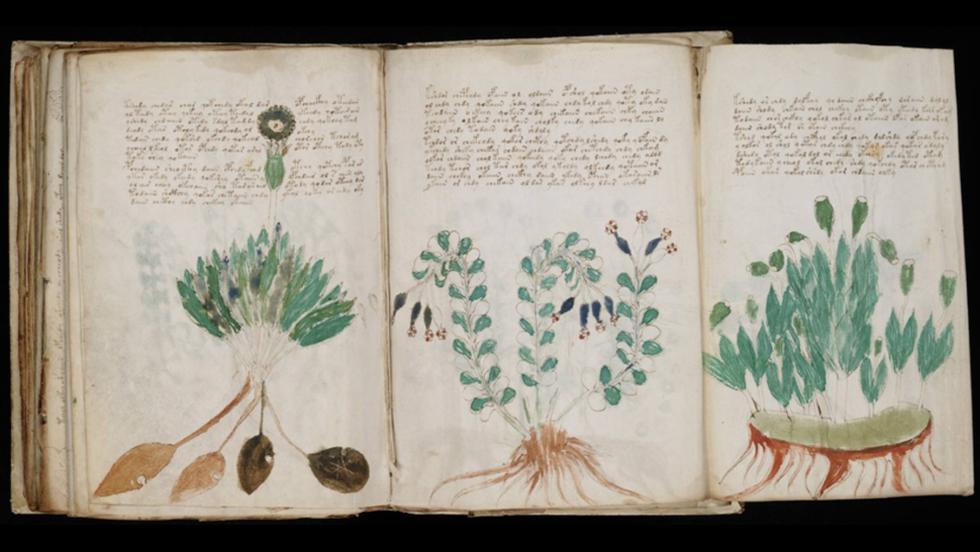 En 1912, un coleccionista de libros polaco llamado Wilfrid Voynich adquirió y dio a conocer uno de los textos más extraños que existen. (Yale university)