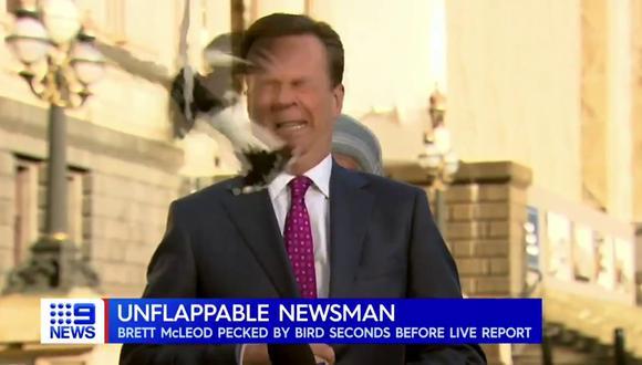El periodista Brett Mcleod pudo recuperar la compostura rápidamente. (Foto: 9News | Twitter)