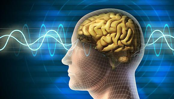 ADIÓS A UN MITO. El cerebro trabaja como un todo. (USI)