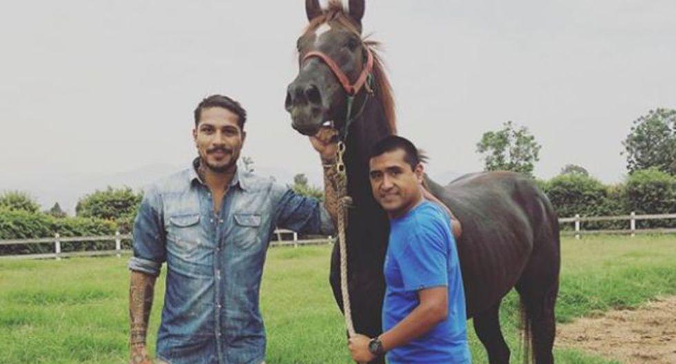 Guerrero visitó a uno de sus caballos campeones, Elbchausse. (Paolo Guerrero)
