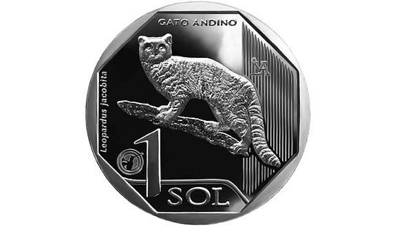 """El gato andino es el felino """"más amenazado"""" en nuestro país. (Foto: BCR)"""