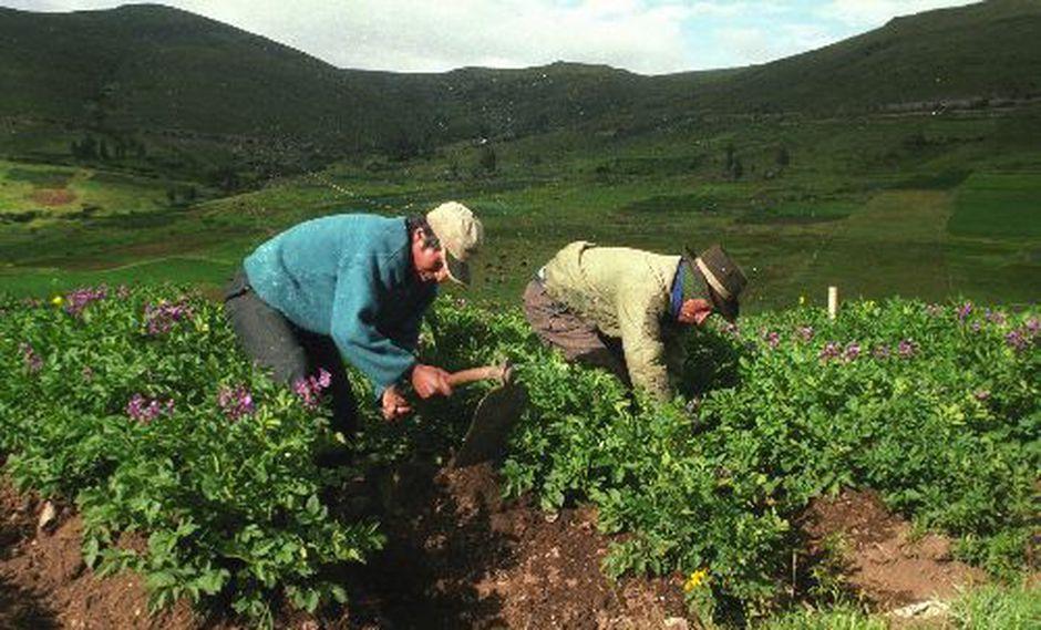 La norma incrementa las vacaciones para los trabajadores del sector de 15 a 30 días. (Foto: Difusión)