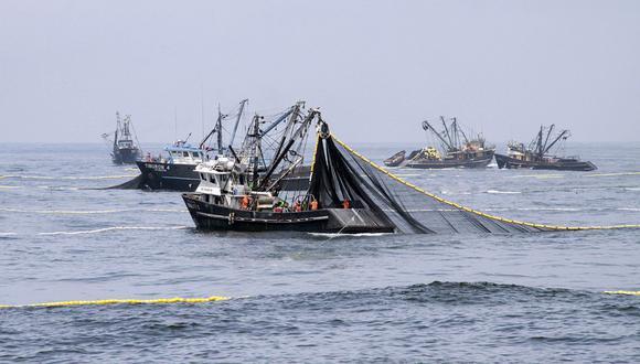 Se registró un desembarque de 1,641 millones de toneladas de anchoveta. (Foto: Produce)
