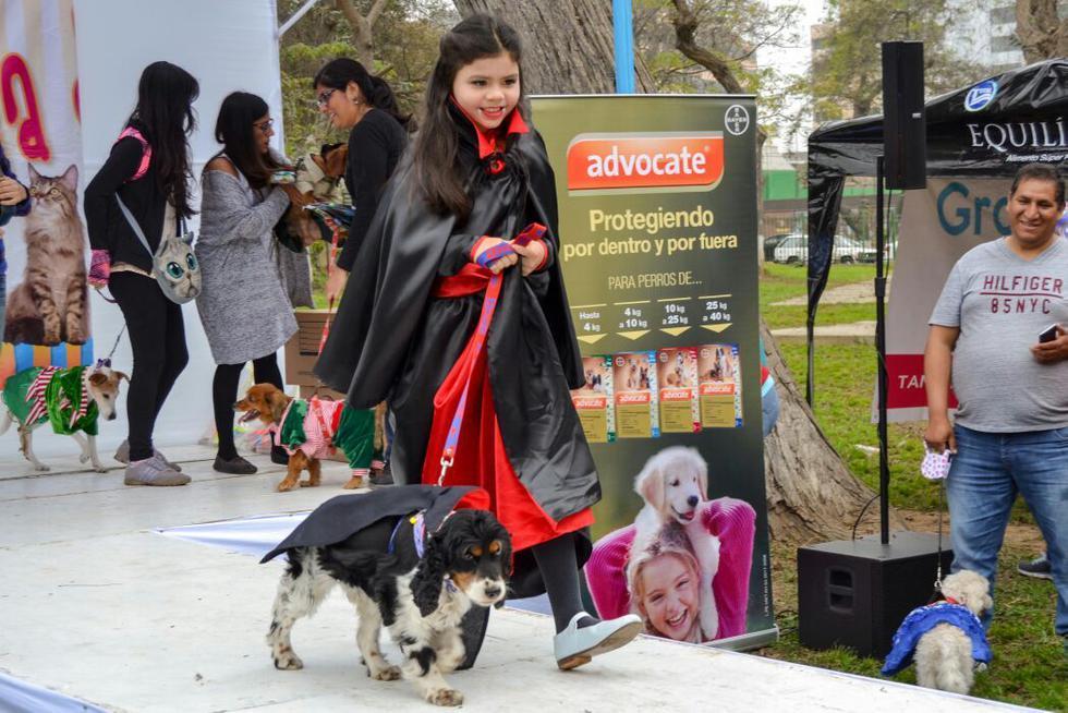 Decenas de mascotas desfilaron en Jesús María. (Municipalidad)