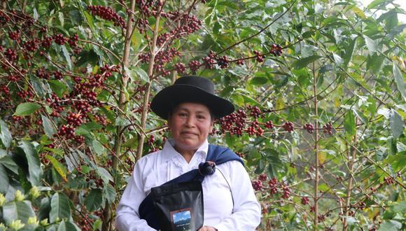 El café de Hilda Leguía, ganadora de Taza de Excelencia Perú de este año, superó los precios obtenidos por los mejores cafés del 2018 y 2019.