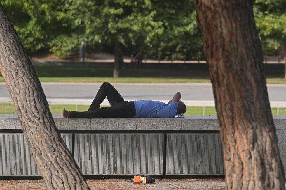 Un hombre yace a la sombra bajo unos árboles en Madrid, España, el miércoles 11 de agosto de 2021. (AP/Paul White).