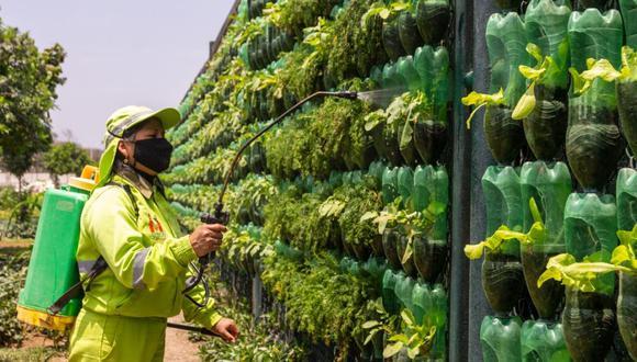 La iniciativa busca promover el reciclaje en el uso de áreas verdes. (Municipalidad de Surco)
