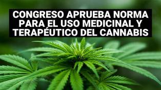 Cannabis: Congreso aprobó ley que garantiza acceso a su uso medicinal