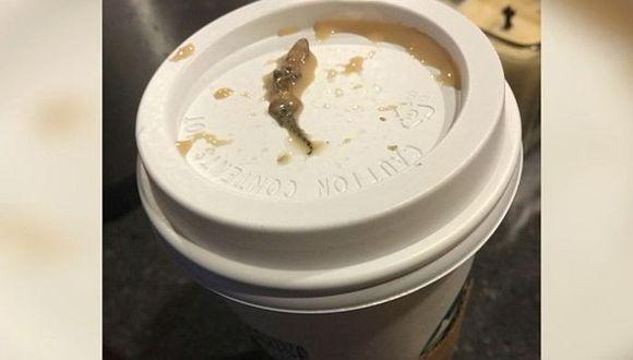 Mujer denunció que halló una lagartija en su café de Starbucks. (ABC15)