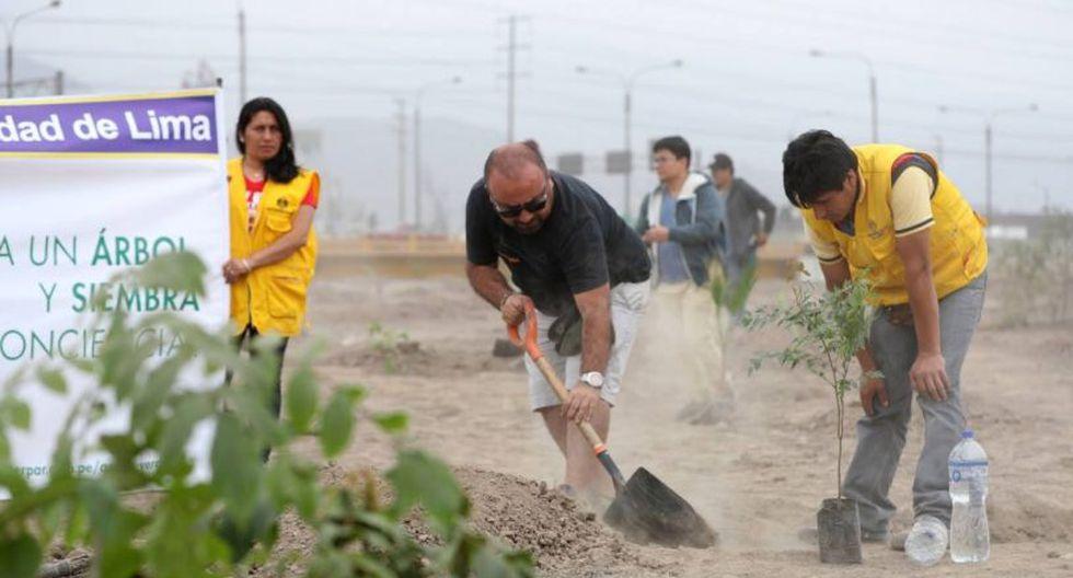 Los vecinos participaron en el sembrado con el apoyo de especialistas de Serpar. (Foto: El Comercio)