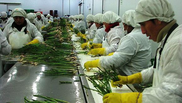 El Perú puede posicionarse como proveedor mundial de alimentos. (USI)