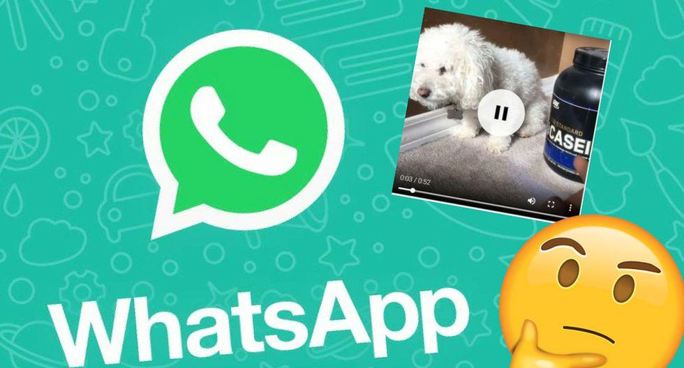 ¿Quieres bajar un video que te mandaron por WhatsApp? No te preocupes, sigue estos pasos y lo harás de una manera efectiva. Ahora puedes guardar los archivos que enviaron y no quieres perder. (WhatsApp)