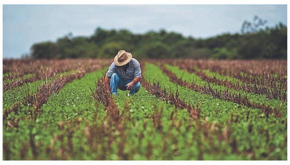 """""""La LPA benefició directamente a poblaciones que tenían altas tasas de pobreza con más de 4,000 empresas acogidas, que generaron más de 400 mil empleos formales descentralizados en zonas rurales del Perú""""."""