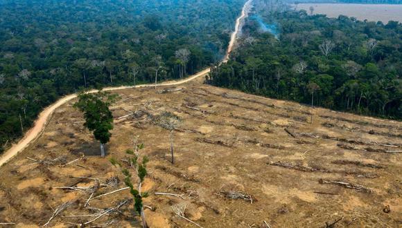 La deforestación, como la que ocurre en la Amazonía, propicia infecciones y aumenta calentamiento global. (Foto: AFP)