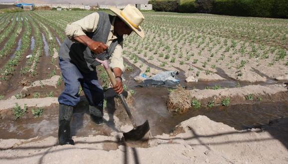 María Antonieta Alva dijo que entregarán créditos a pequeños productores con tasas de 3.5% a través del Fondo Agroperú. (Foto: GEC)
