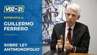 Guillermo Ferrero sobre Ley Antimonopolio