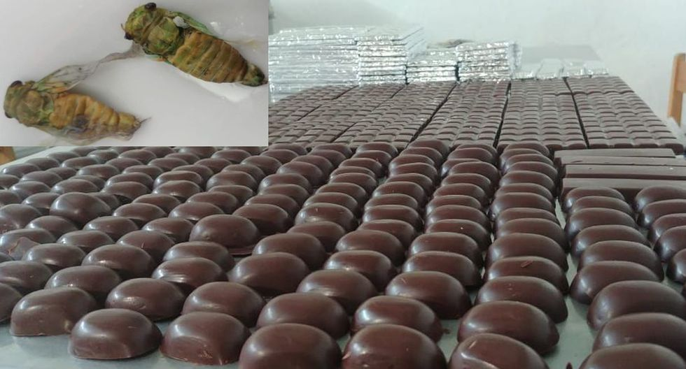Los productos serán presentados durante el X Festival Nacional del Cacao Nativo Pangoa – Vraem 2019. (Difusión)