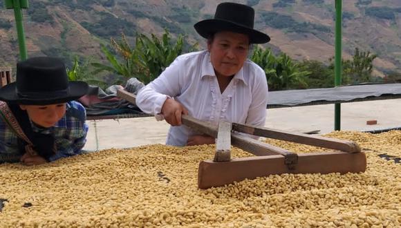 """Hilda Leguía: """"Estoy orgullosa de mi trabajo, y espero que se consuma más café"""""""