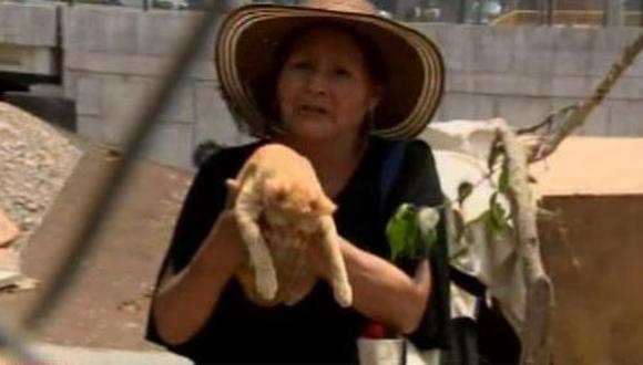 La Policía Nacional (PNP) logró rescatar un gato que quedó atrapado durante tres días en una ribera del río Rímac, cerca al puente 2 de Mayo. (Video: América TV)