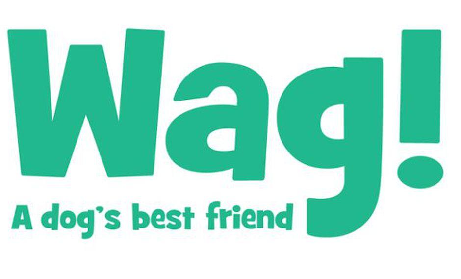 Esto es todo lo que debes saber sobre 'Wag', la aplicación para pasear a tus perros (Wag)