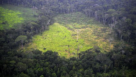 Una estrategia de largo plazo para afrontar la crisis climática . (Foto: AFP)
