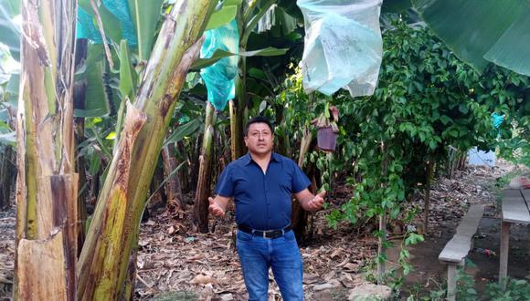 José Correa, agricultor piurano de banano orgánico.