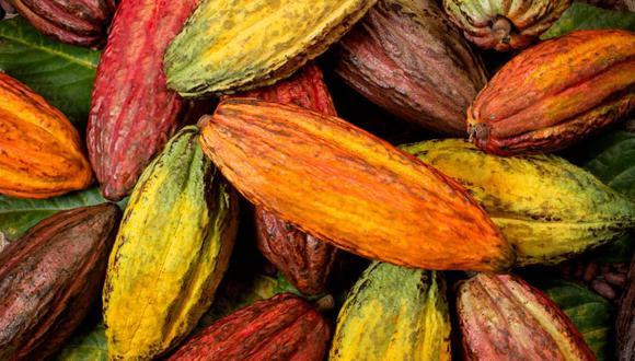 El objetivo del evento estuvo enfocado en reactivar la economía de los agricultores y chocolateros.