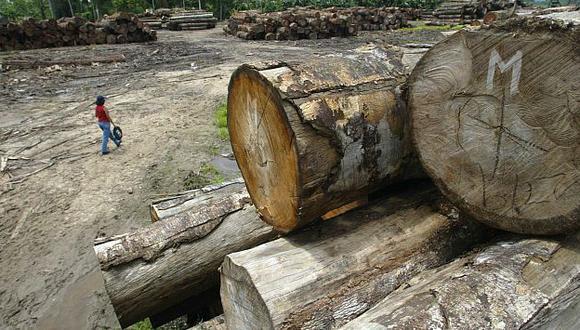 Destrucción. Deforestación es más grave donde hay migrantes. (Miguel Bellido)