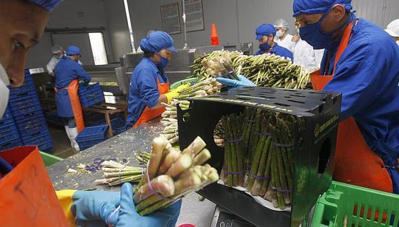 Los envíos del subsector agropecuario-agroindustrial representaron el 88.6% de los envíos. (Foto: Difusión)