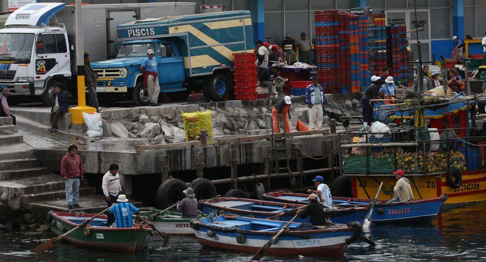 Para inscribirse, los pescadores deben contar con el Registro Único de Contribuyente (RUC) y llenar los formularios correspondientes. (Foto: GEC)