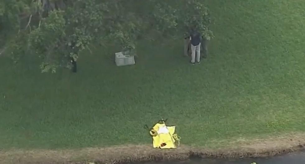Se desconoce si familiares de las niñas se han contactado con la policía tras la difusión de la noticia sobre el hallazgo de los cuerpos en un canal de Lauderhill (sur de Florida, Estados Unidos). (Captura/NBC6).