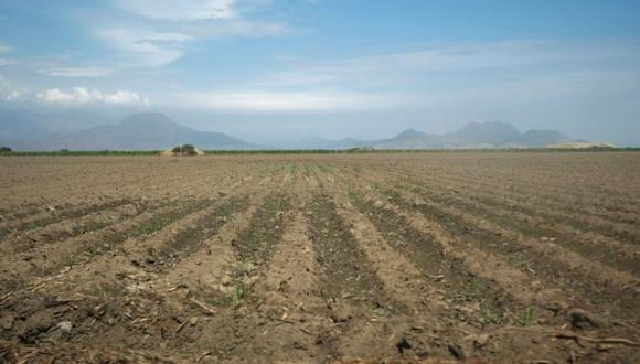 FANTASMAS. Medida evoca la Reforma Agraria, critican gremios. (Fidel Carrillo)