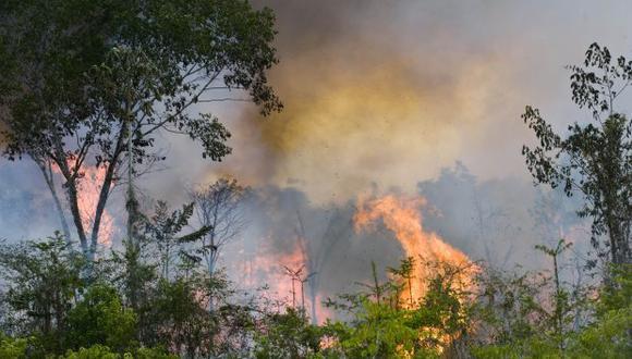 La gran cantidad de incendios forestales no se puede atribuir a la estación seca o fenómenos naturales. (Foto referencial: AFP)