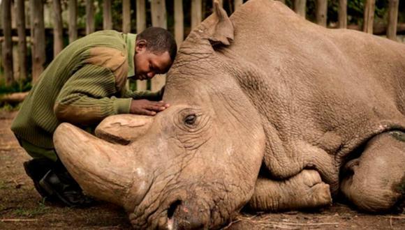 La conmovedora historia que se esconde tras la considerada mejor foto por National Geographic. (Ami Vitale)