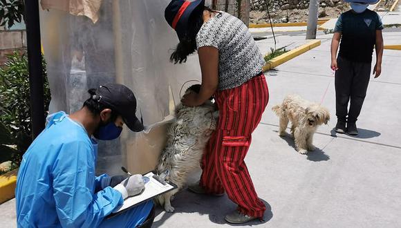 Advierten que los propietarios se hacen responsables por las acciones de sus canes y podrían recibir sanciones penales y civiles de acuerdo a Ley (Foto: Geresa)