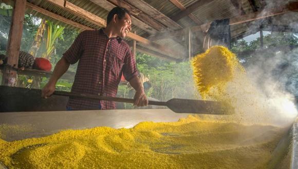 La fariña es un alimento ancestral en la Amazonía, rico en fibra, proteína vegetal, ácido fólico y minerales, como el potasio, magnesio, fósforo y calcio. (Devida)