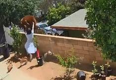 El momento en que una joven de 17 años se enfrenta a un oso para salvar a sus perros