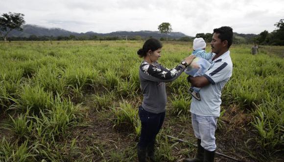 Los excombatienes iban a ser llevados a centros en Antoquia y Causa. En la foto, una pareja de excombatientes de las Farc hablan en una finca en San Vicente de Caguan, donde reciben capacitación en ganadería. (Foto: EFE)