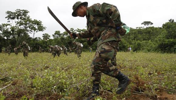 Antes del ataque, militares y policías realizaban tareas de erradicación de coca. (AP)