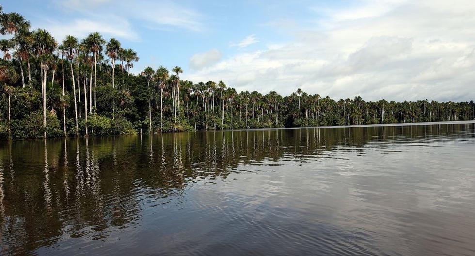 Según el Ministerio de Cultura, el pueblo iñapari, conformado aldeas semi nómades, ocupó antiguamente las zonas cercanas a las cuencas del río Madre de Dios. Foto referencial. (Archivo / El Comercio)