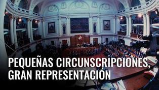 Pequeñas circunscripciones, gran representación [VIDEO]