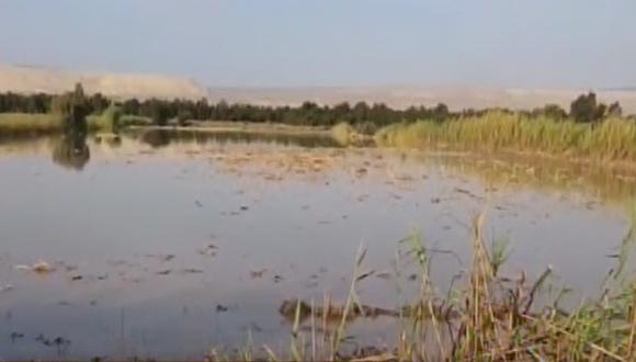 Ica: más de 100 hectáreas de cultivo afectadas por desborde del río (Foto: captura de pantalla)