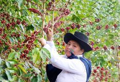 El mejor café del Perú es del Cusco y ella es la productora