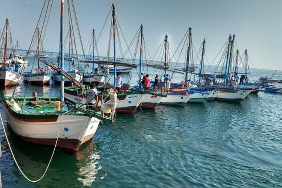 La pesca artesanal en veleros es especialmente importante en la zona de las caletas de Cabo Blanco y El Ñuro. (Foto: ANDINA/Difusión)