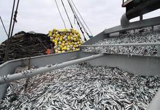 [OPINIÓN] Abraham Levy: Pesca  2021
