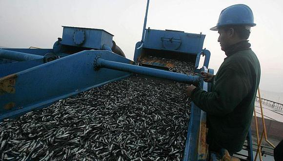 Ministerio de la Producción reportó una mejora de hasta 12 millones de toneladas en la biomasa de anchoveta. (USI)