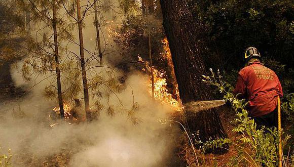 Hasta el momento han fallecido siete brigadistas por los incendios forestales en el sur. (Reuters)